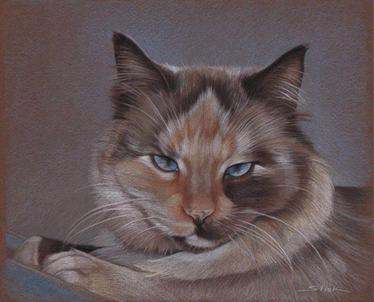 """Portrait of Sophia"" (large view)"