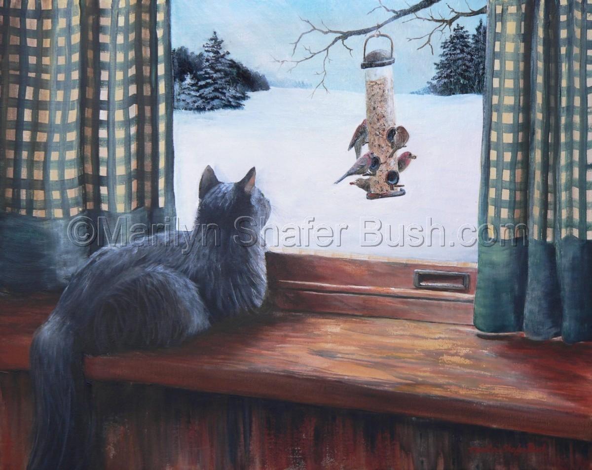cat watching birds at birdfeeder (large view)