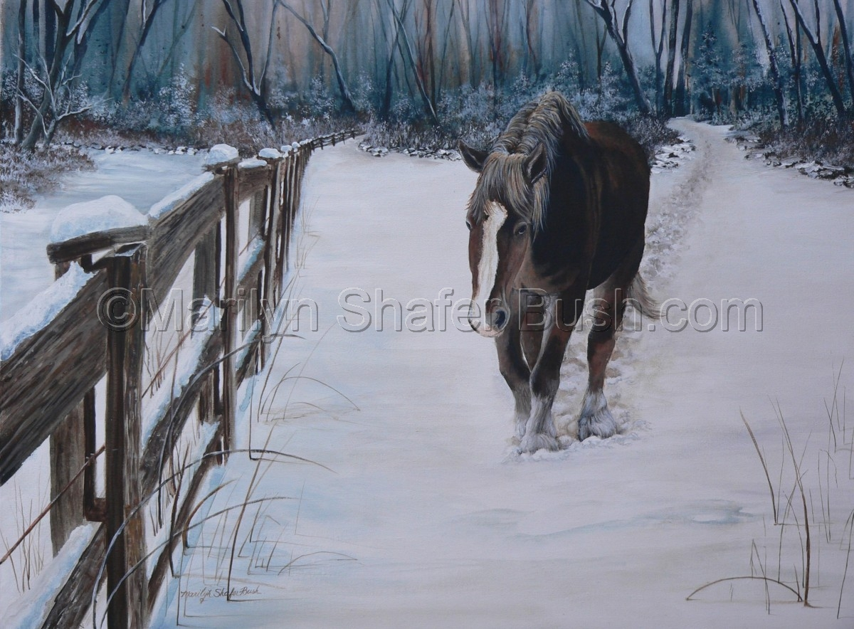 Lone horse walking in snow (large view)