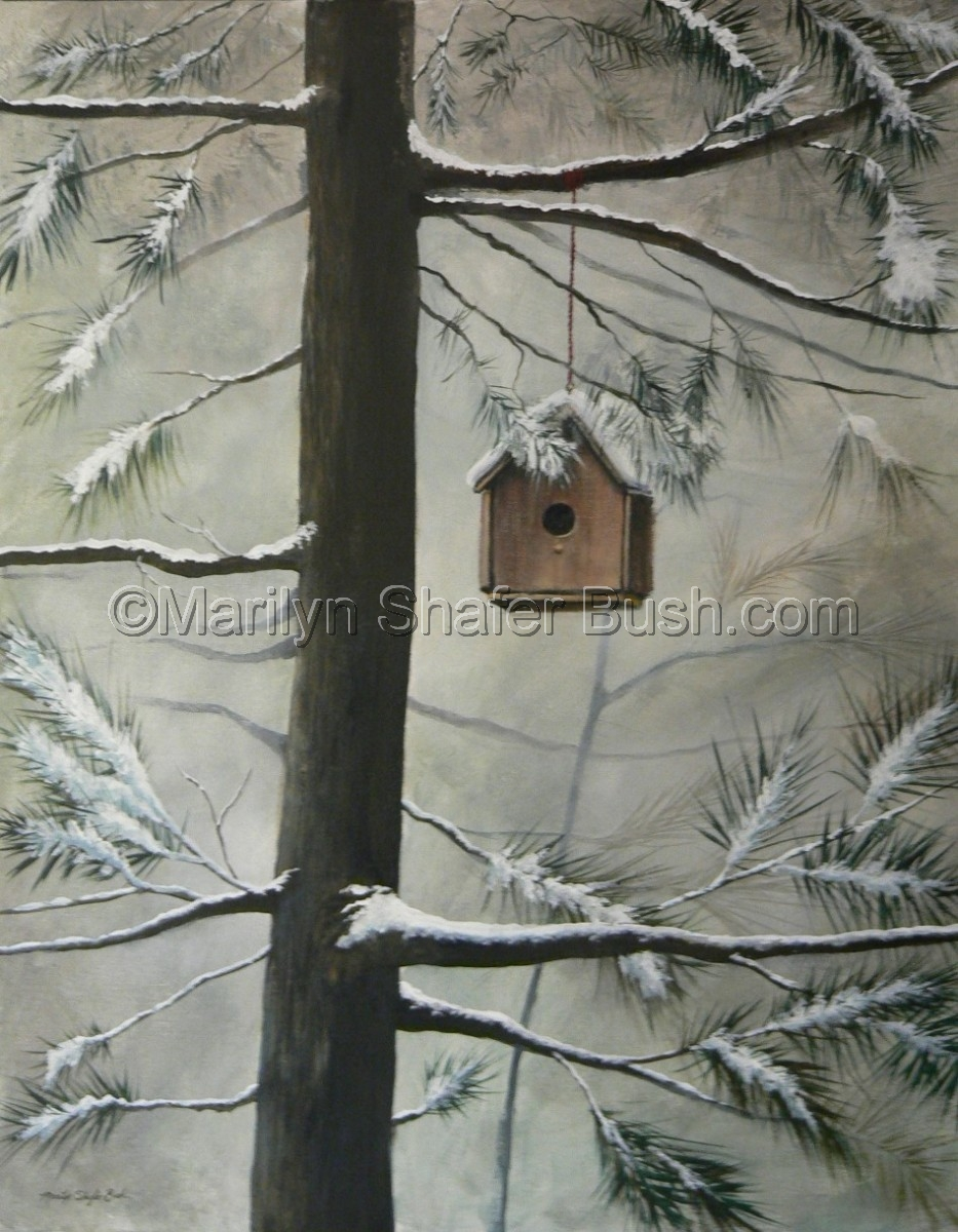 Empty birdhouse covered in snow hanging in an evergreen tree (large view)