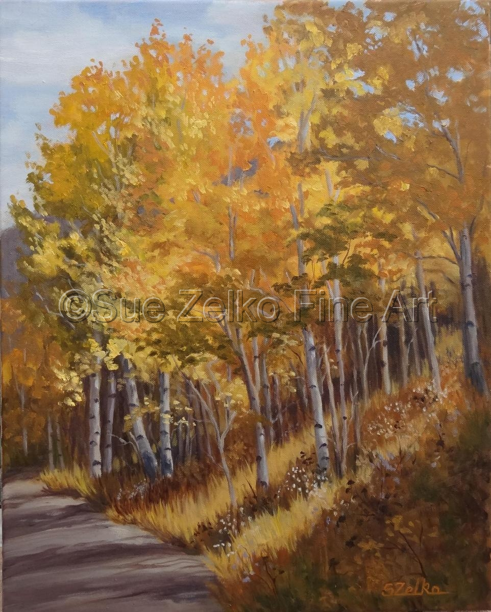 Landscape of aspen trees in Wyoming turning yellow and orange in the fall (large view)