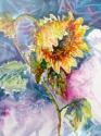 Sunny Sunflower (thumbnail)