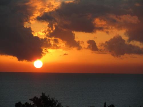 """""""Sunrise #6"""""""