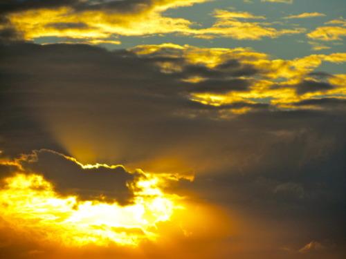 """""""Sunrise #7"""""""