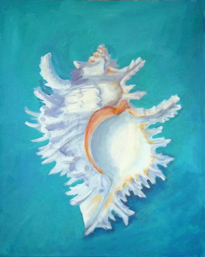 Shell No. 10 (Chicoreus)
