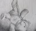 Hanging Bear (thumbnail)