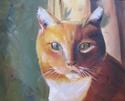 Rosie's cat (thumbnail)