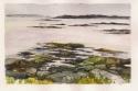 Rocks at Low Tide (thumbnail)