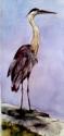Carvers Pond Blue Heron (thumbnail)