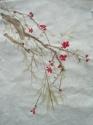 new blossom (thumbnail)
