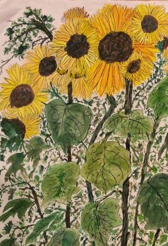 -Sunflowers peak