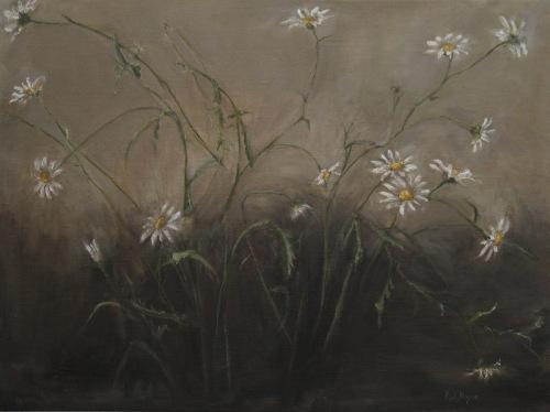 Cindy's Daisies by Karen Ryan Fine Art