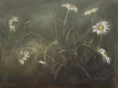 Daisies in the Mist