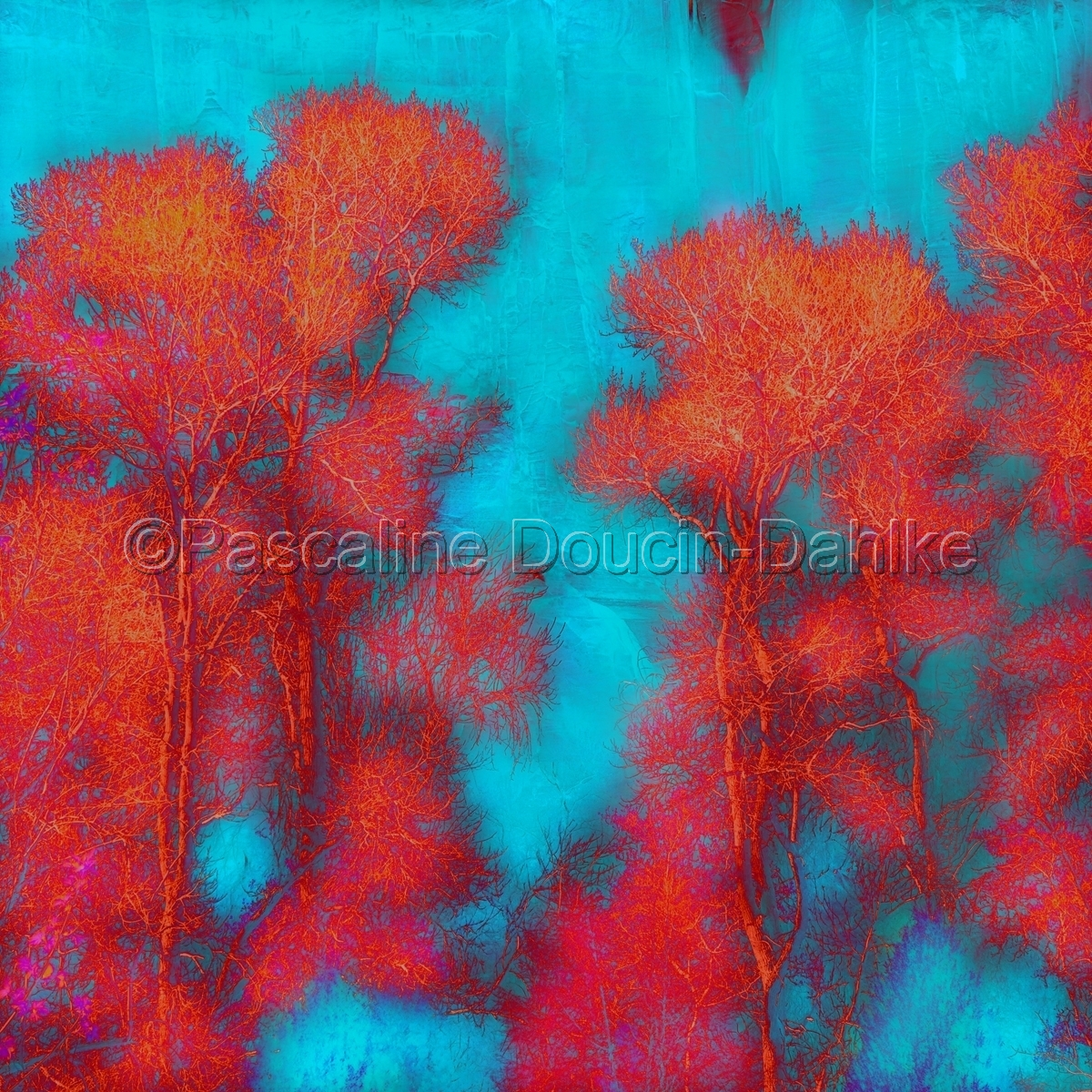 Zion Coral trees (large view)