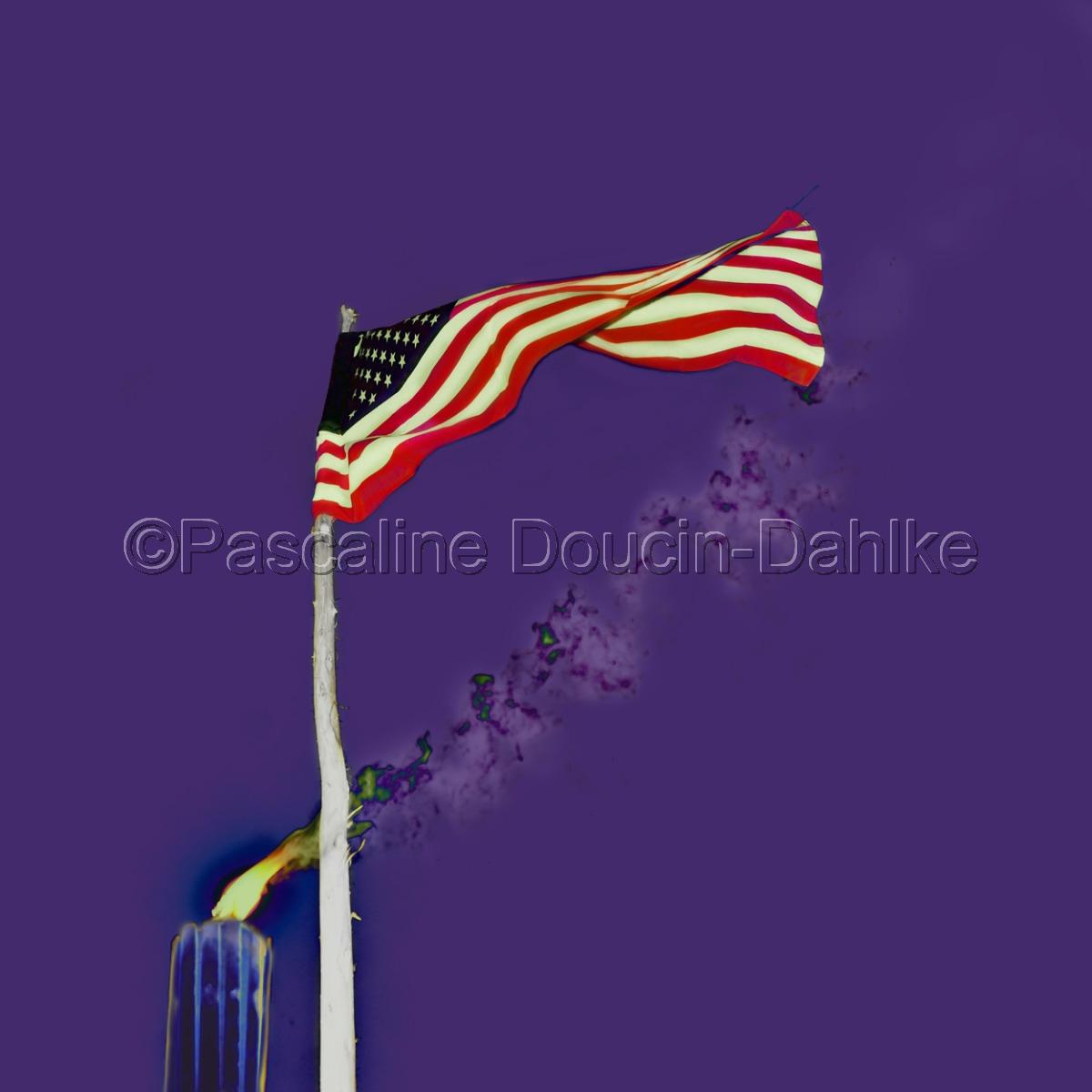 Solo flag purple (large view)