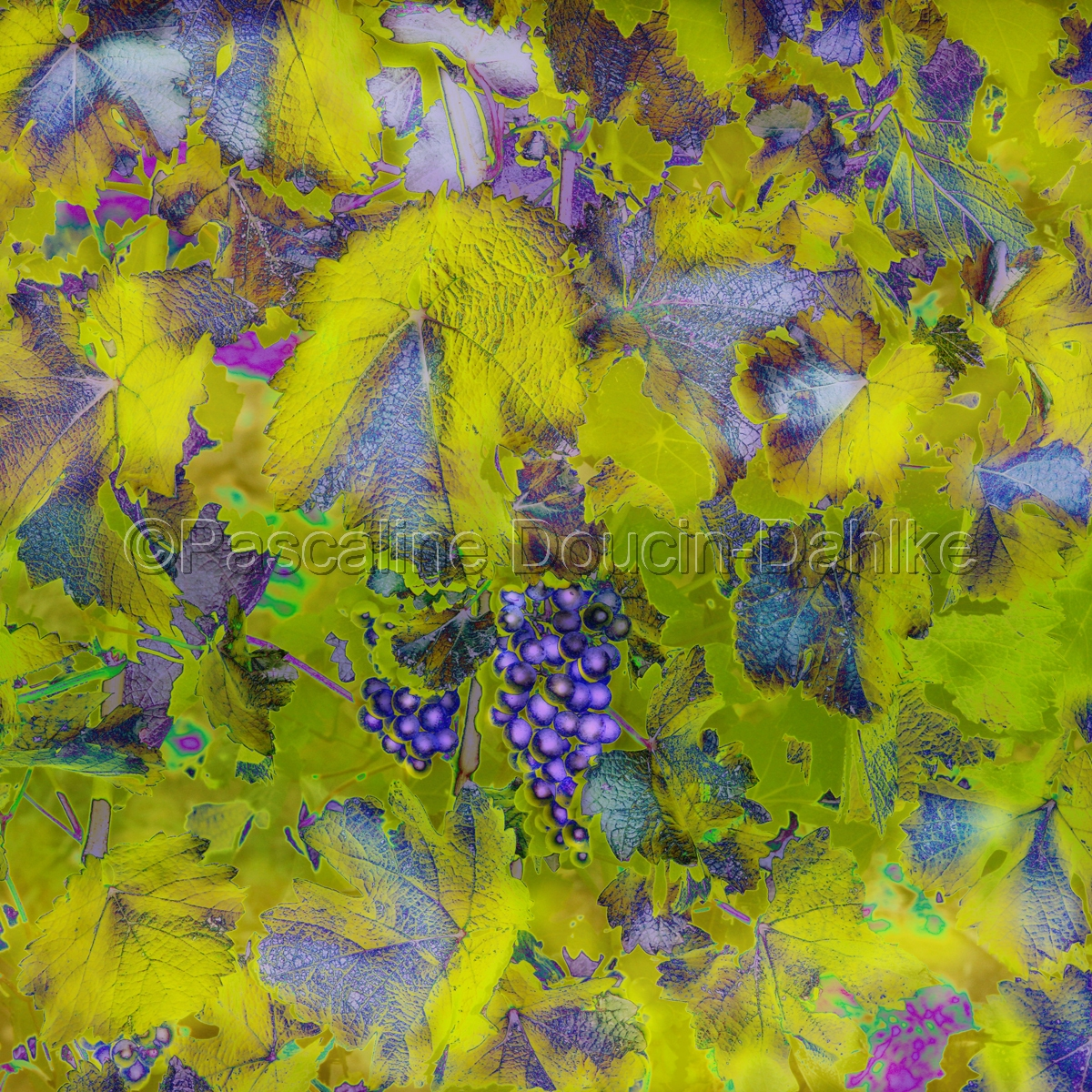 Purple grapes tapestry (large view)