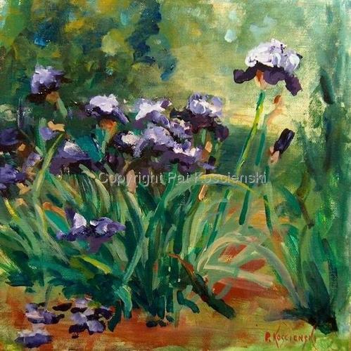 Katie's Irises (large view)