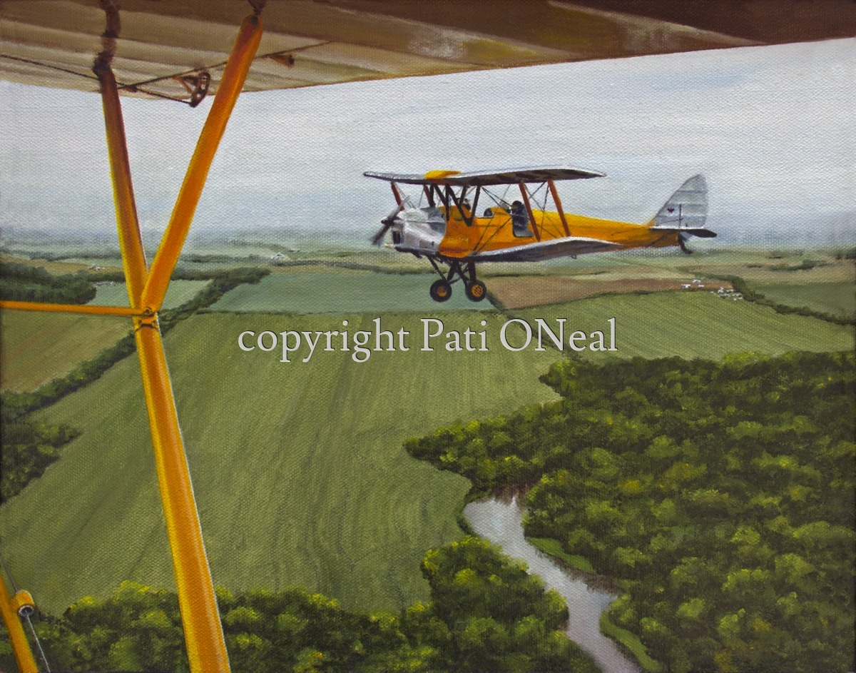 Tiger Moth and Cub (large view)