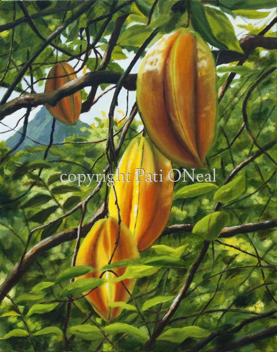 Carambola Glow (large view)