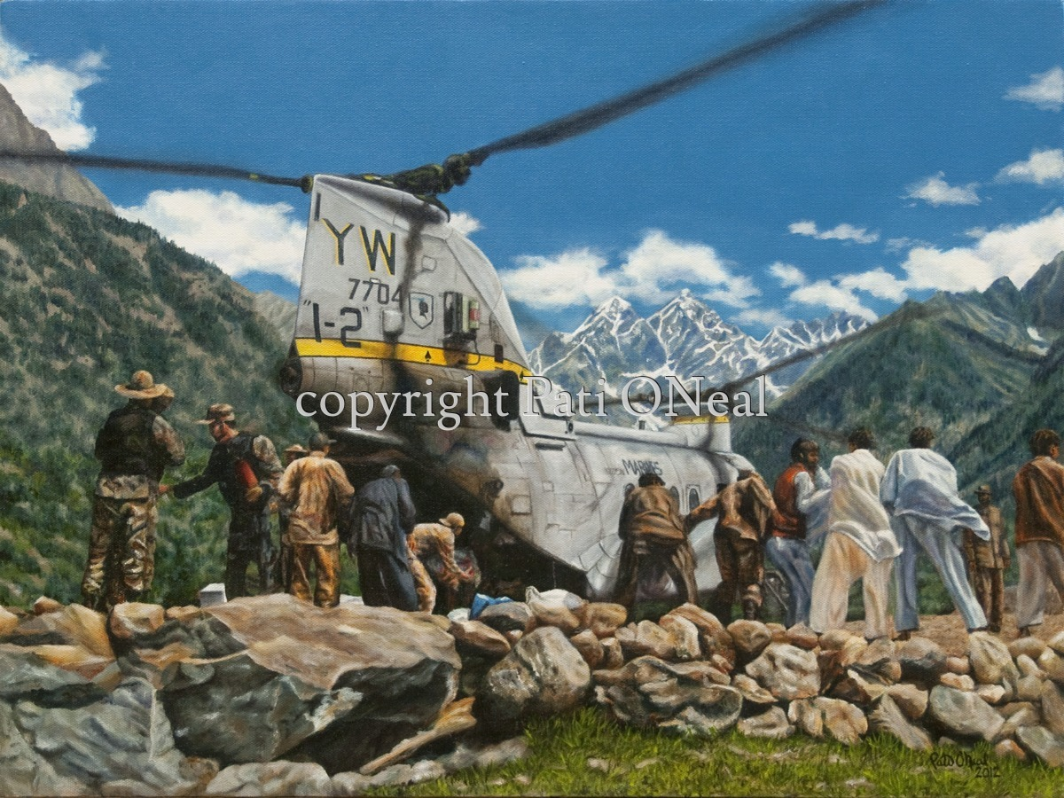 Swat Valley Aid (large view)