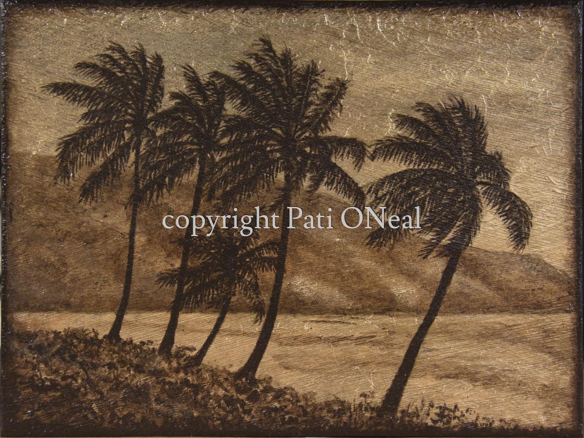 Windy Palms (large view)