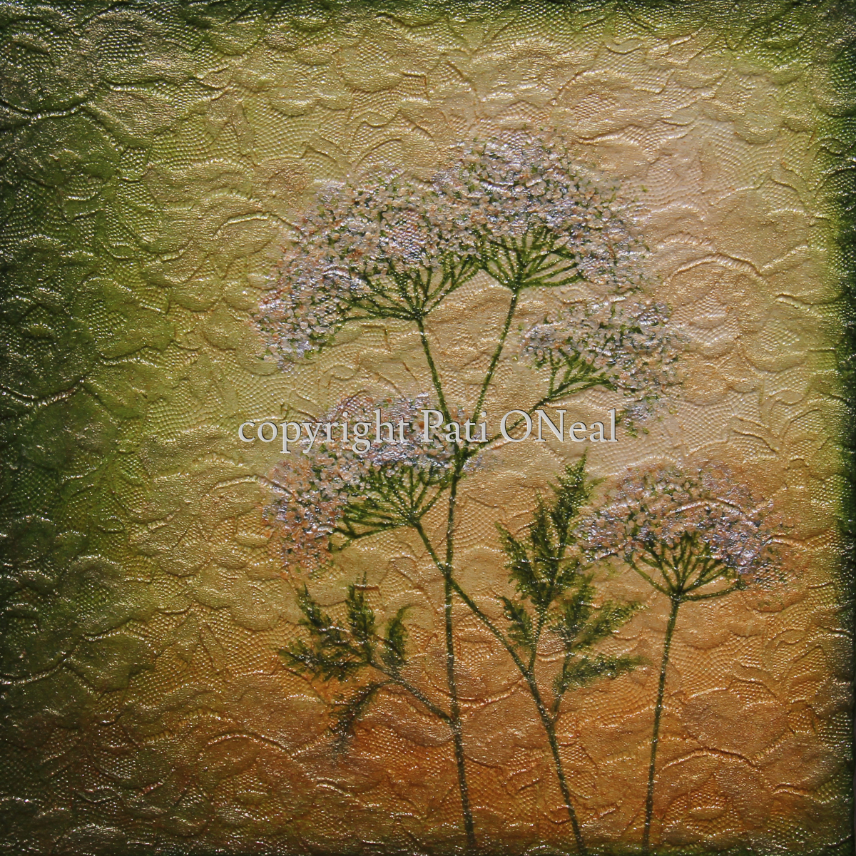 Queen Anne's Lace (large view)