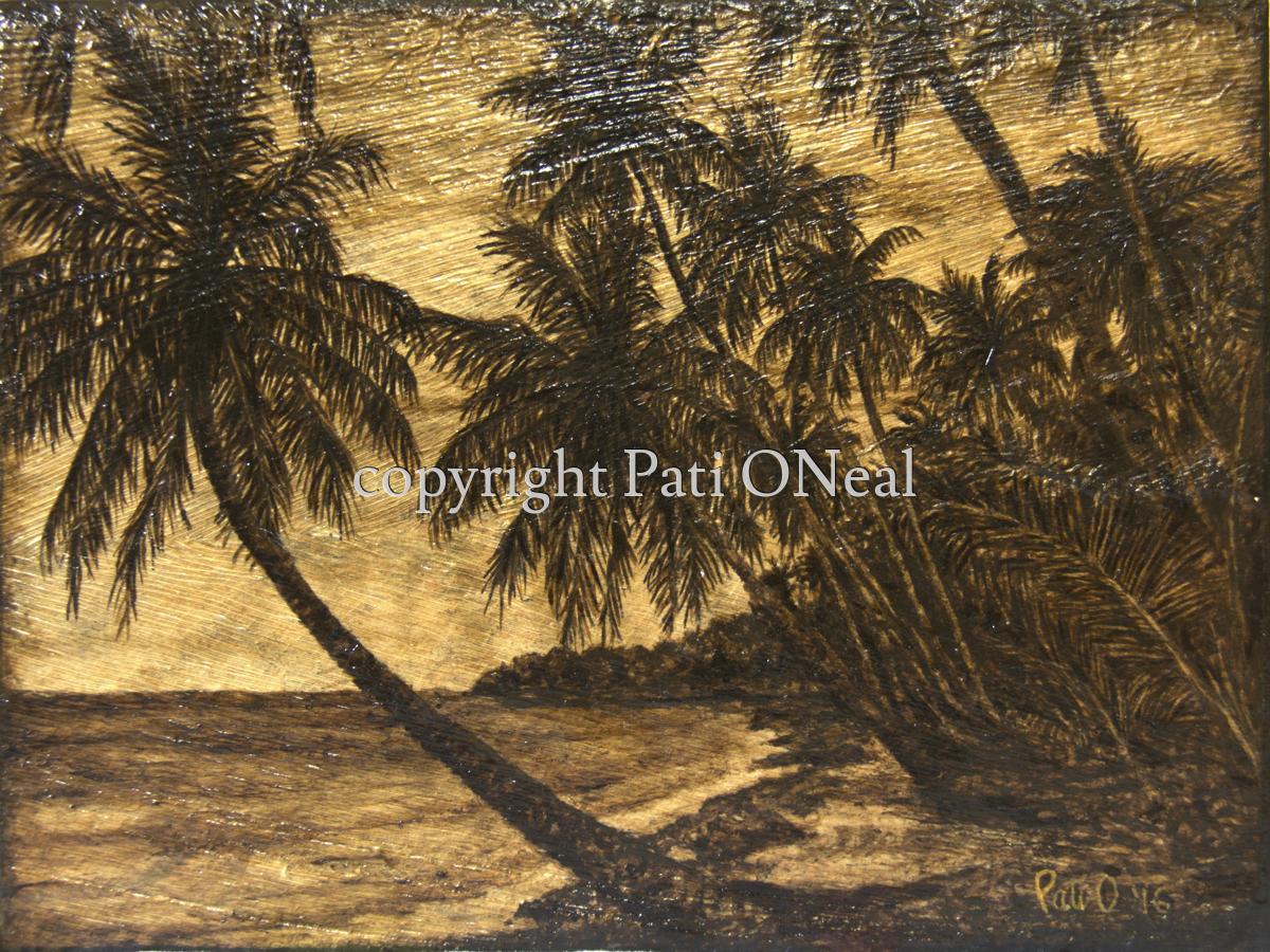 Coconut Coast (large view)