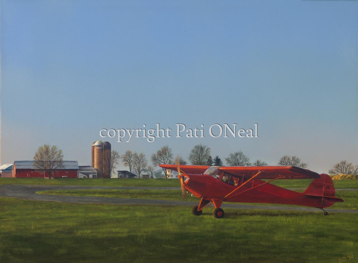 Taylorcraft Heading Home (large view)