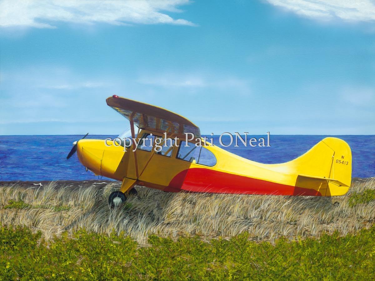 Aeronca Champ on the Lake Shore (large view)
