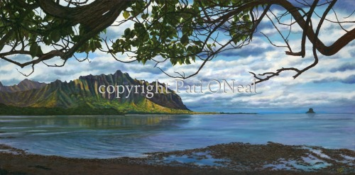 Waiahole Afternoon Vista by Pati O'Neal