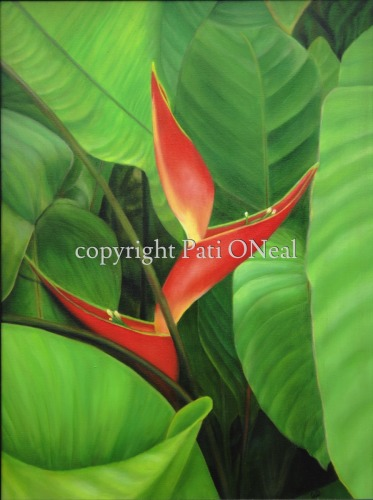 Dwarf Jamaican Heliconia (large view)
