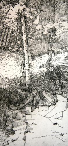 Tree Upon the Ledge