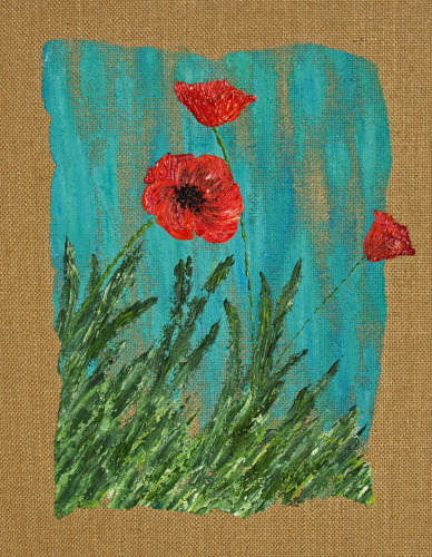 Poppies by PATRICK LAWSON