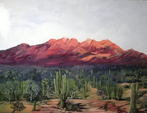 McDowell Mountains with Saguaro