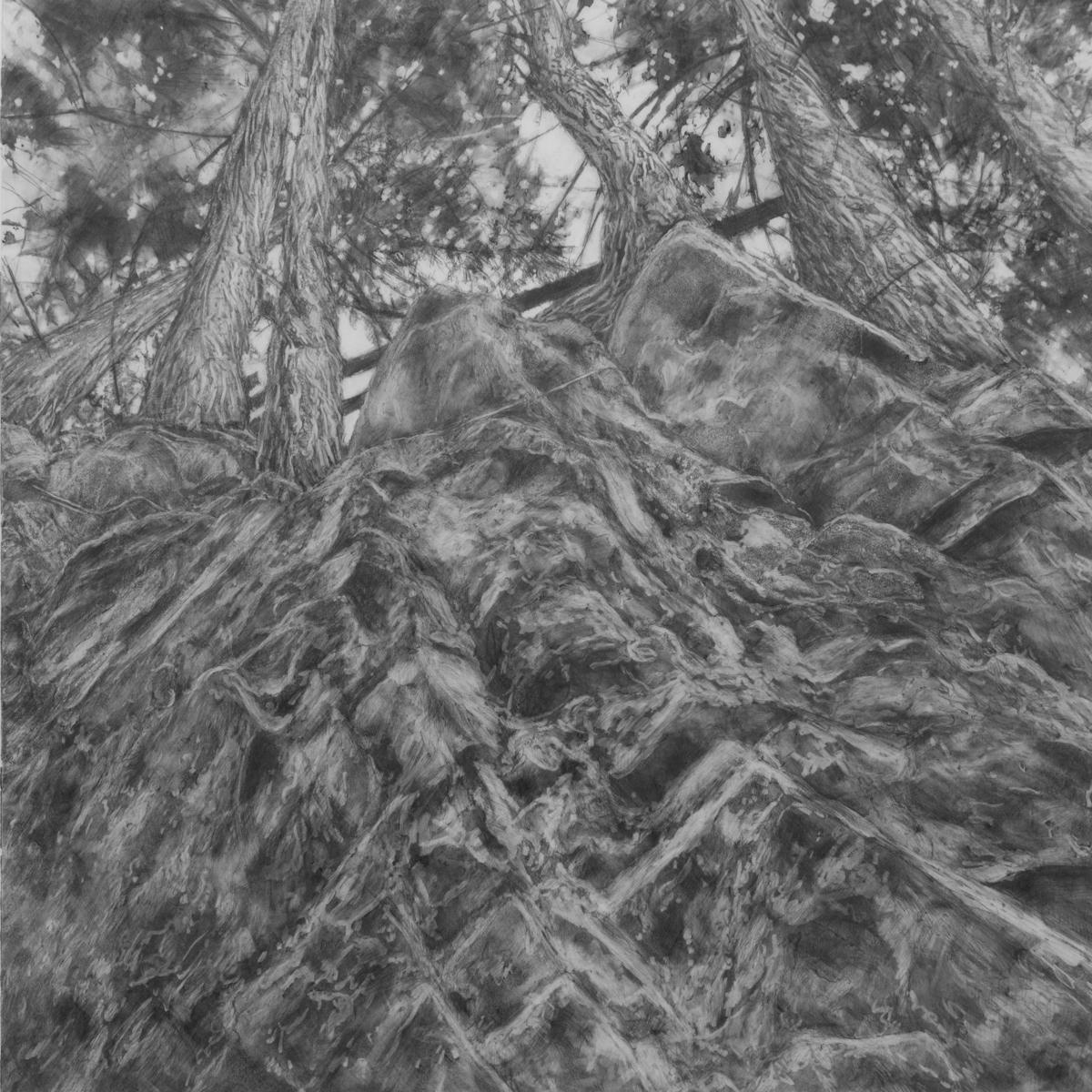 porcupine gorge (large view)
