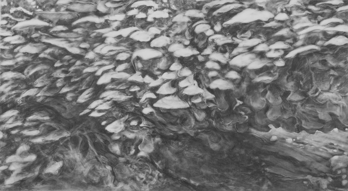 mushroom log (large view)