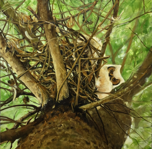 owlet by Patricia  Dorr Parker