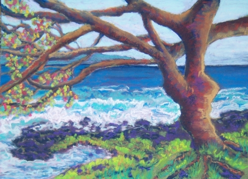 Keaukaha Coastal Tree / 284
