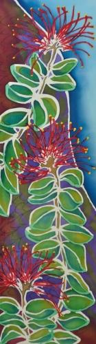 Blossoming Ohia Lehua / 406