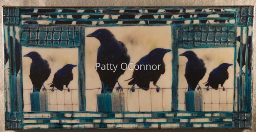Crows on the Fence
