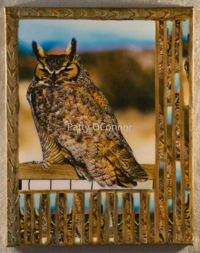 Great Horned Lady on the Fence