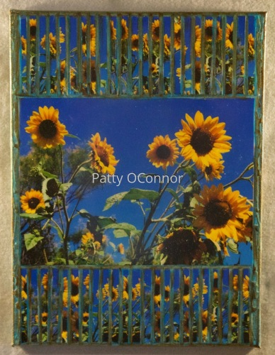 Canyon Road Sunflowers