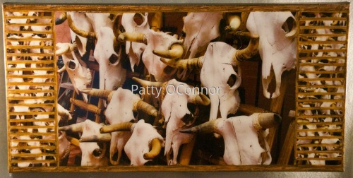 Heads of Cattle