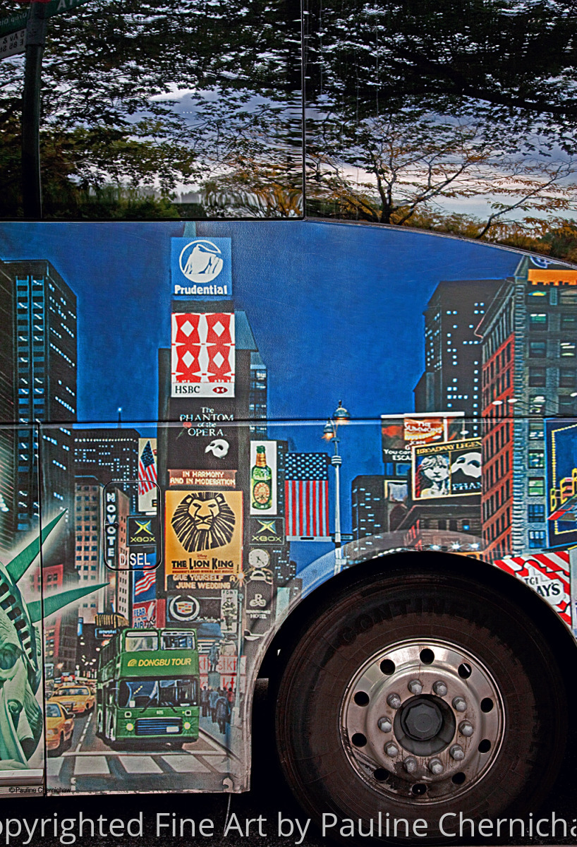 5th Avenue Bus (large view)