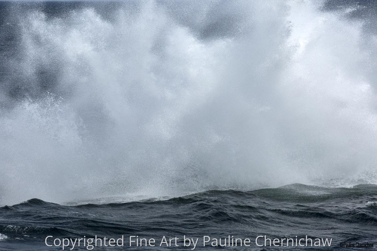 Whale Mist (large view)