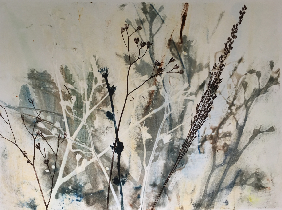 Silver Grasses (large view)