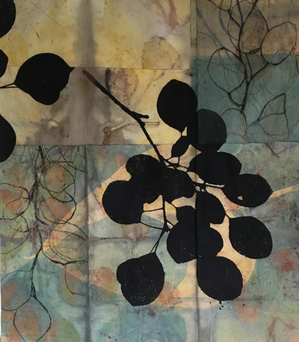 Plant Shadows by Paula Zinsmeister