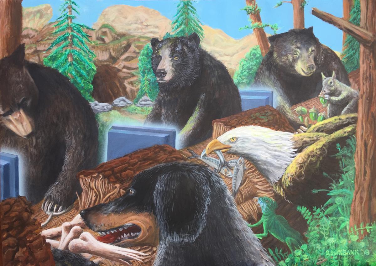 Bear Bank (large view)