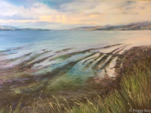 St. Andrew's Coastline