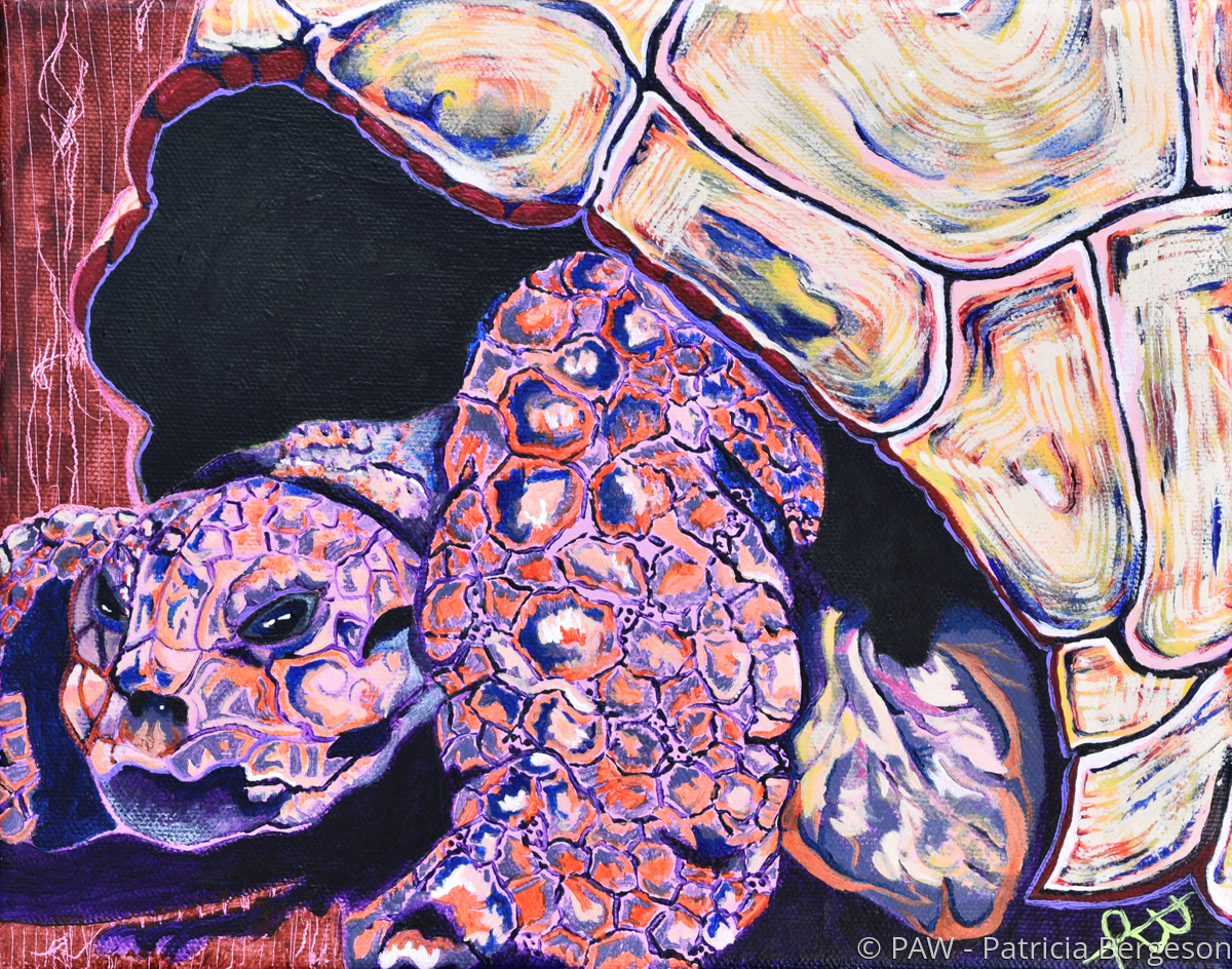 Monster Turtle Abstract (large view)